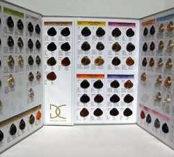colour chart coiffeur dikson new